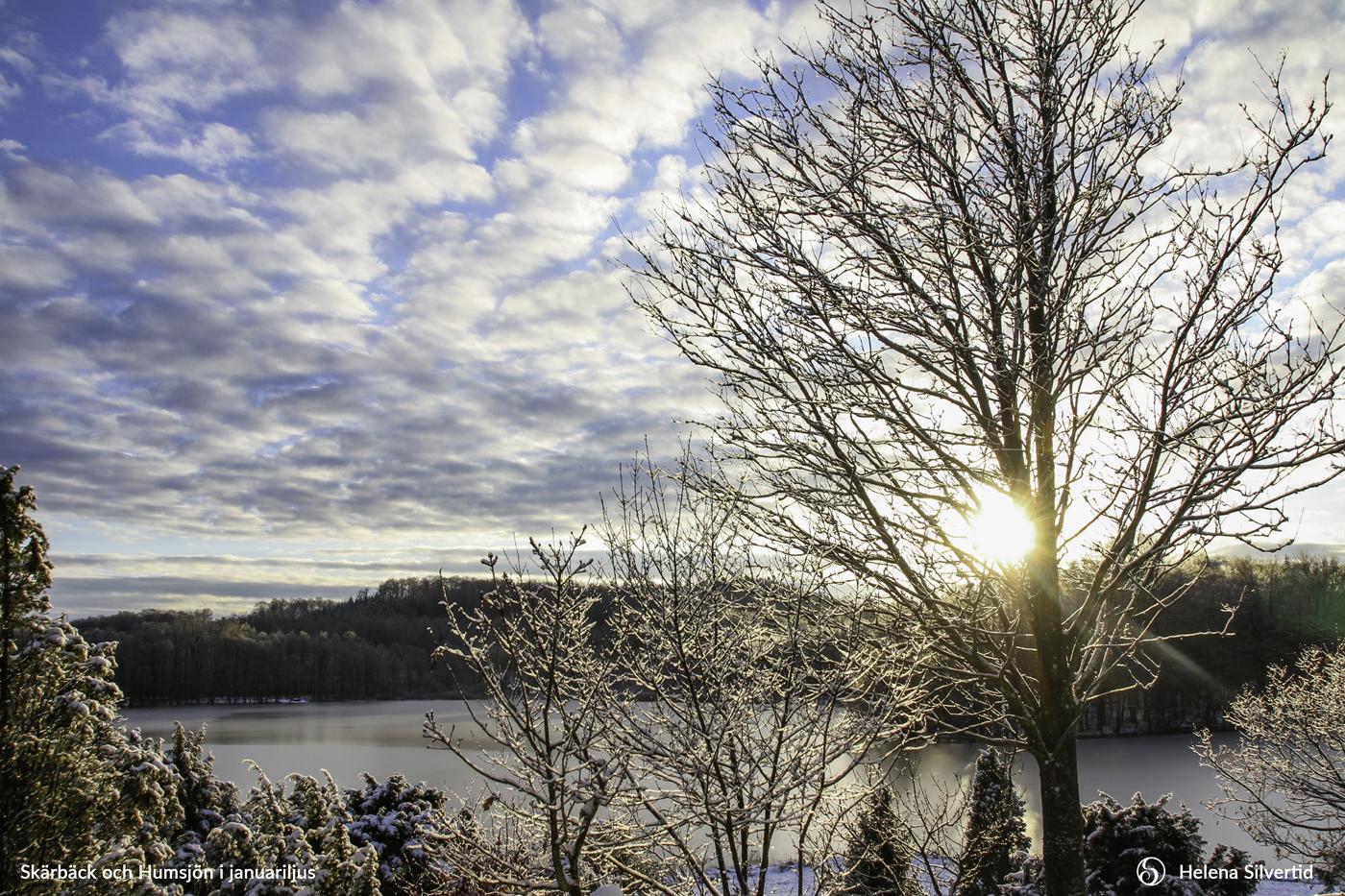 01-2021-Januari-Skärbäck-och-Humsjön-i-januariljus-Foto-av-Helena-Silvertid